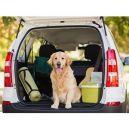 Ταξίδι Με Τον Σκύλο Μας