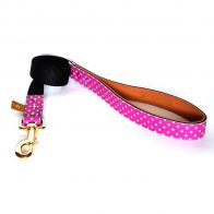 "argus collar - the ""pinky dot"" leash"
