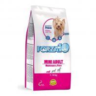 forza10 mini adult fish pet shop