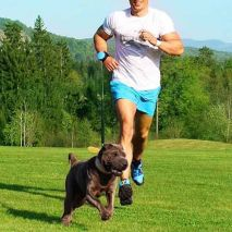 lishinu-dog-leash-running