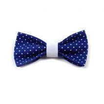 Argus Collar Παπιγιόν Σκύλων Blue Polka Dot