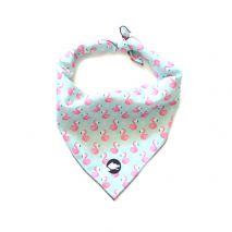 argus collar the flamingo dog bandana
