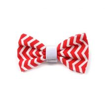 Argus Collar Παπιγιόν Red Chevron