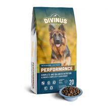 DIVINUS Dog Food Performance