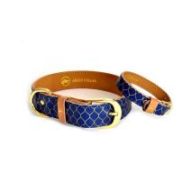 dog collar argus collar gentleman
