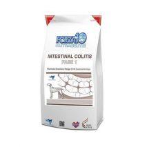 forza10 intestinal colitis fase I 4kg