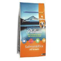 inalcan platinum dog salmon 10kg