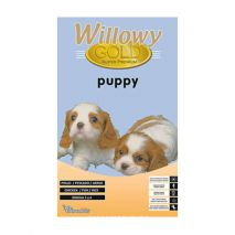 willowy gold puppy 15kg
