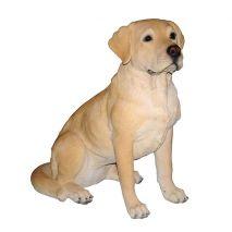 Άγαλμα Σκύλου Labrador Golden Sitting
