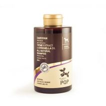 pqp thyme extract citronella shampoo