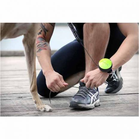 lishinu-dog-leash