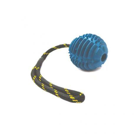 Παιχνίδι σκύλων με σκληρή μπάλα και σχοινί