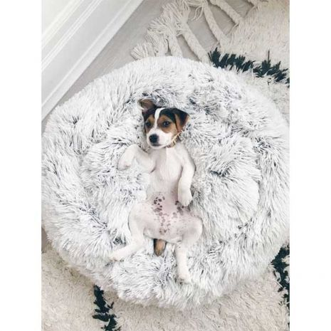 Fluffy Donut Μαξιλάρι Σκύλου Γάτας