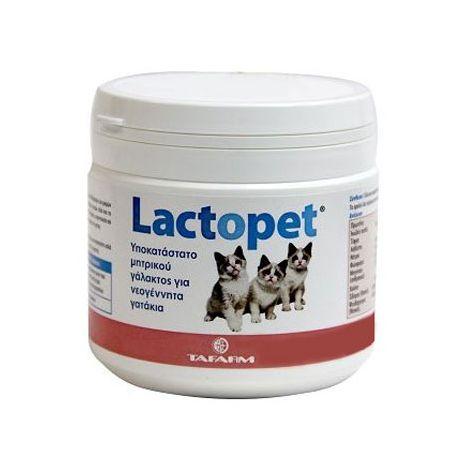 Lactopet Kitten Milk Γάλα Σε Σκόνη