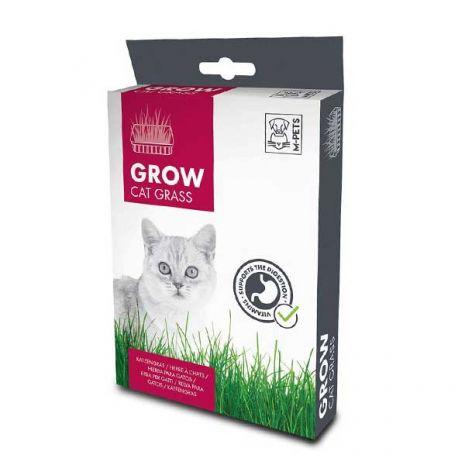 Grow Cat Grass - Γρασίδι για Γάτες